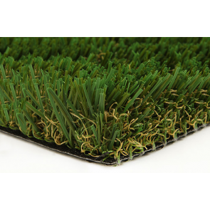turf-fescue-green
